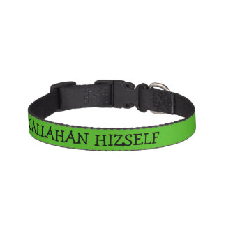 Kelly Green Dog Collar Personalized