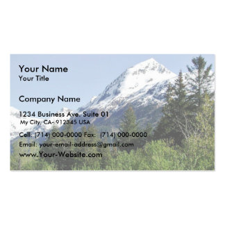 Kenai Fjords National Park Pack Of Standard Business Cards