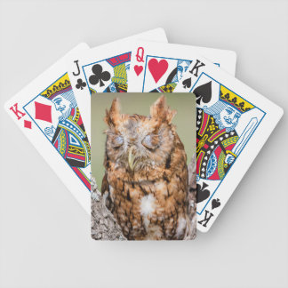 Kendall County, Texas. Eastern Screech-Owl 1 Bicycle Playing Cards