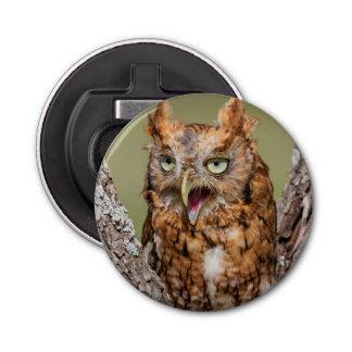 Kendall County, Texas. Eastern Screech-Owl 2 Bottle Opener