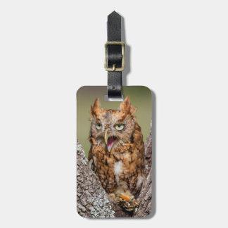 Kendall County, Texas. Eastern Screech-Owl 2 Luggage Tag