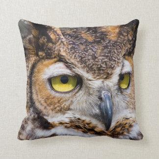 Kendall County, Texas. Great Horned Owl Cushion