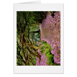 Kenmare Rhododendron Tunnel Card