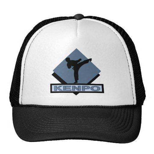 Kenpo bue diamond mesh hat