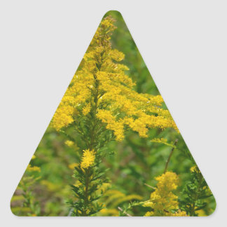 Kentucky Goldenrod Triangle Sticker