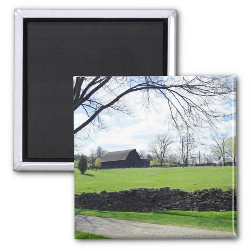 Kentucky Horse Farm Magnet