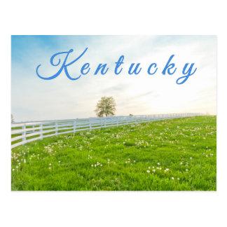 Kentucky Postcard. Countryside landscape in spring Postcard