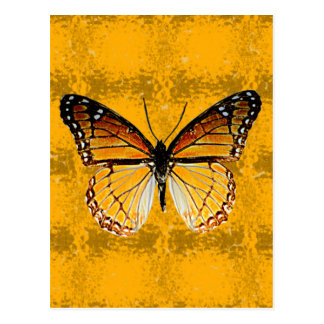 Kentucky Viceroy Butterfly Postcard