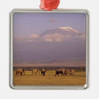 Kenya: Amboseli National Park, elephants and Christmas Ornament