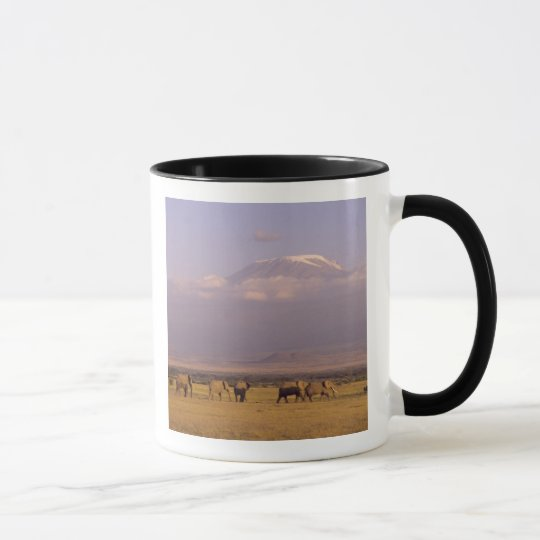 Kenya: Amboseli National Park, elephants and Mug