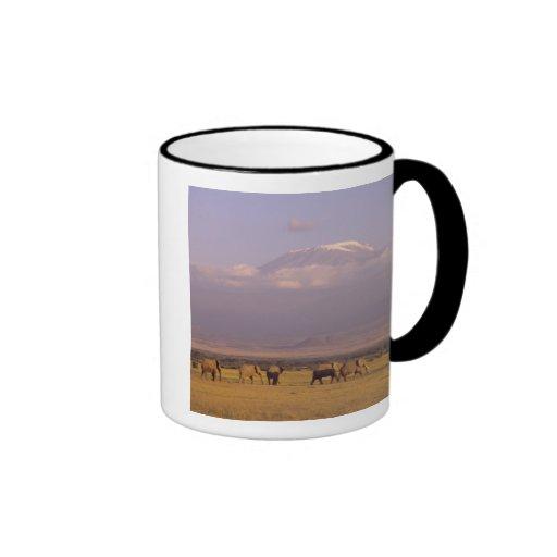 Kenya: Amboseli National Park, elephants and Ringer Coffee Mug
