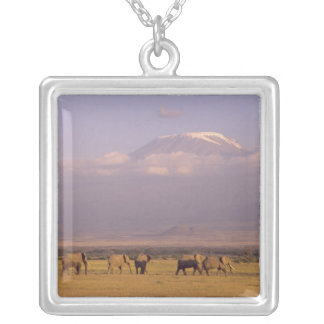 Kenya: Amboseli National Park, elephants and Silver Plated Necklace