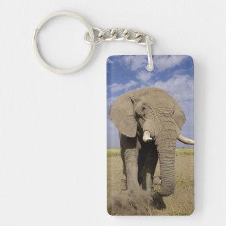Kenya: Amboseli National Park, male elephant Key Ring