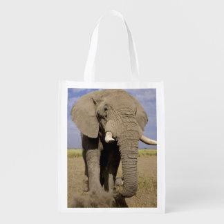 Kenya: Amboseli National Park, male elephant Grocery Bags