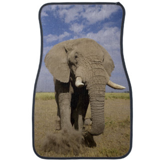 Kenya: Amboseli National Park, male elephant Car Mat