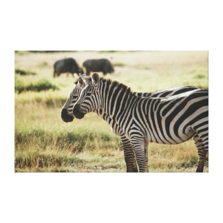 Kenya, Amboseli National Park, Two Zebras Canvas Print