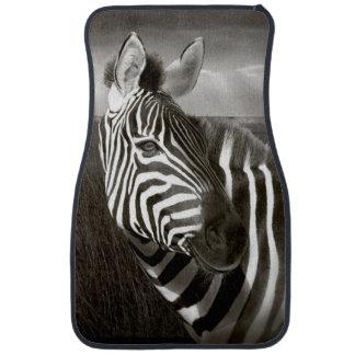 Kenya. Black & white of zebra and plain. Car Mat