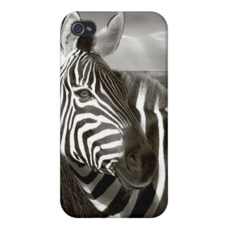 Kenya. Black & white of zebra and plain. Case For The iPhone 4