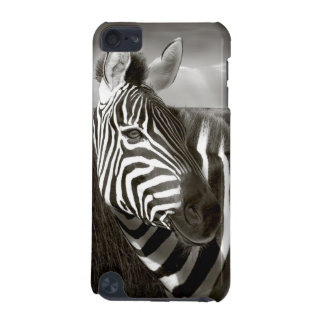 Kenya. Black & white of zebra and plain. iPod Touch 5G Covers