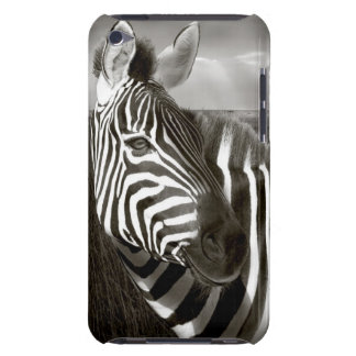 Kenya. Black & white of zebra and plain. iPod Touch Case-Mate Case
