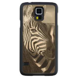 Kenya. Black & white of zebra and plain. Maple Galaxy S5 Case