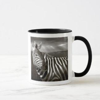 Kenya. Black & white of zebra and plain. Mug