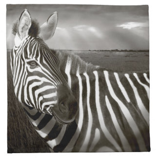 Kenya. Black & white of zebra and plain. Napkin