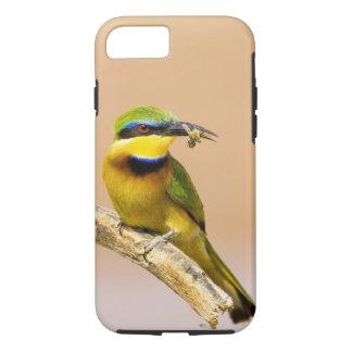 Kenya. Close-up of little bee-eater bird on limb iPhone 7 Case