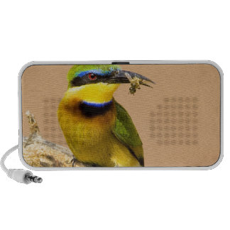 Kenya. Close-up of little bee-eater bird on limb Travelling Speakers