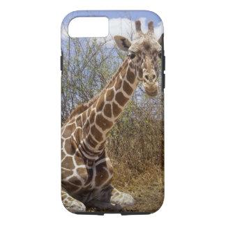Kenya: Laikipia Plateau, Loisaba Wilderness iPhone 8/7 Case