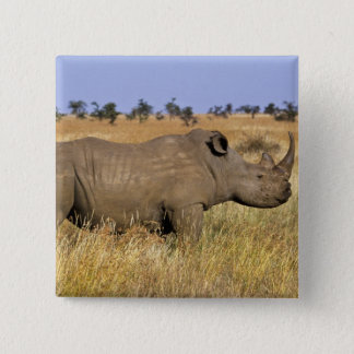 Kenya: Lewa Wildlife Conservancy, white 15 Cm Square Badge