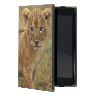 Kenya. Lion Cub (Panthera Leo) Cover For iPad Mini