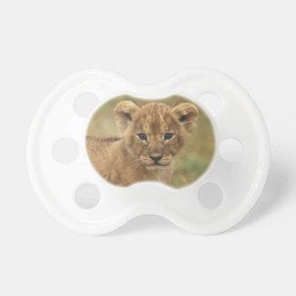 Kenya. Lion Cub (Panthera Leo) Dummy