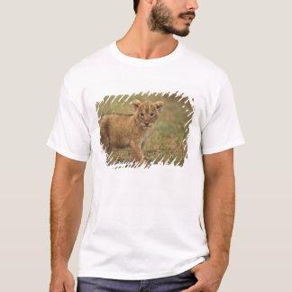 Kenya. Lion Cub (Panthera Leo) T-Shirt