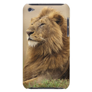 Kenya, Masai Mara. Adult male lion on termite Barely There iPod Covers