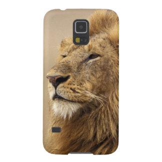 Kenya, Masai Mara. Adult male lion on termite Galaxy S5 Covers