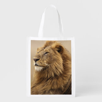 Kenya, Masai Mara. Adult male lion on termite Reusable Grocery Bag