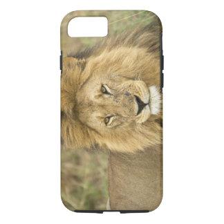 Kenya, Masai Mara. Close-up of lion. Credit as: iPhone 8/7 Case