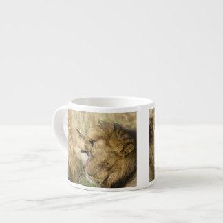 Kenya, Masai Mara. Close-up of one male lion Espresso Cup