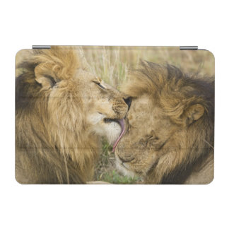 Kenya, Masai Mara. Close-up of one male lion iPad Mini Cover