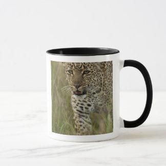 Kenya, Masai Mara Game Reserve. African 2 Mug