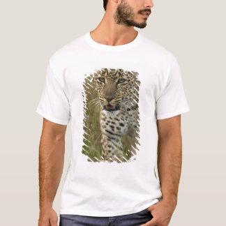Kenya, Masai Mara Game Reserve. African 2 T-Shirt