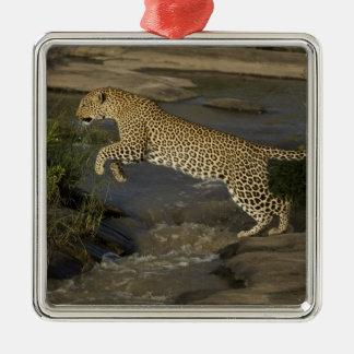 Kenya, Masai Mara Game Reserve. African 4 Silver-Colored Square Decoration