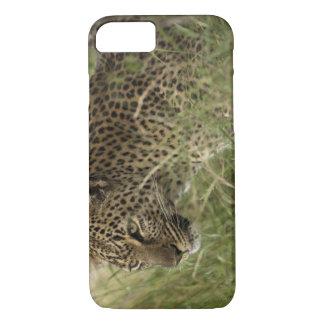 Kenya, Masai Mara Game Reserve. African Leopard 2 iPhone 8/7 Case
