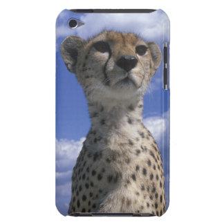 Kenya, Masai Mara Game Reserve, Close-up Barely There iPod Case