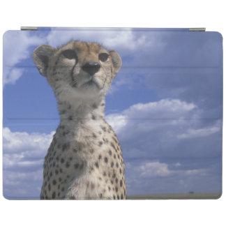 Kenya, Masai Mara Game Reserve, Close-up iPad Cover