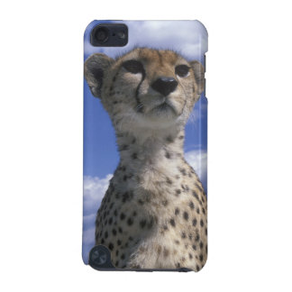 Kenya, Masai Mara Game Reserve, Close-up iPod Touch 5G Covers