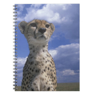 Kenya, Masai Mara Game Reserve, Close-up Notebook