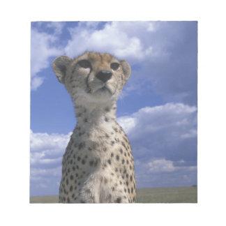 Kenya, Masai Mara Game Reserve, Close-up Notepad