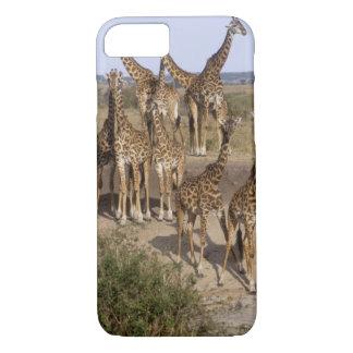 Kenya: Masai Mara Game Reserve herd of one dozen iPhone 8/7 Case